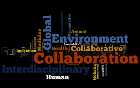 Conference One Health Wordle
