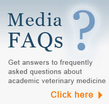 FAQs | Get answers to frequently asked questions about academic veterinary medicine | Click Here